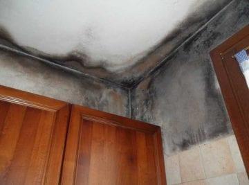 Muffa nera sotto il solaio provocata da condensa